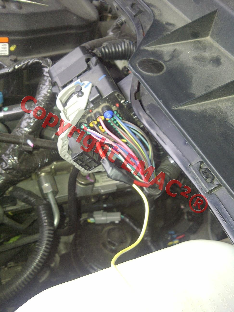 Relay Wire to Fuel Relay